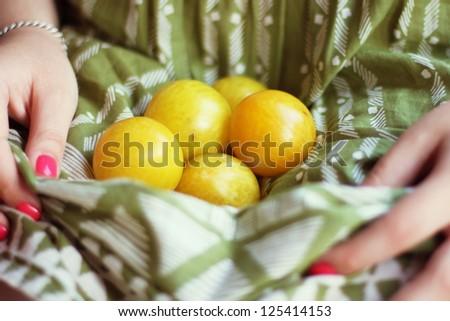 plums - stock photo