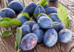 Plums on an old wooden table in the garden.