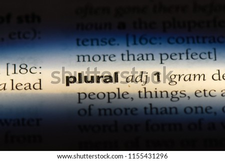 plural word in a dictionary. plural concept.