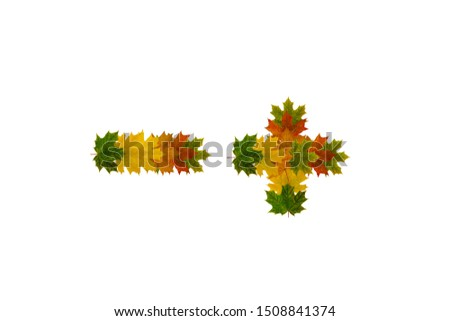 Plus and minus signs from green, yellow and orange autumn maple leaves isolated on white background. #1508841374
