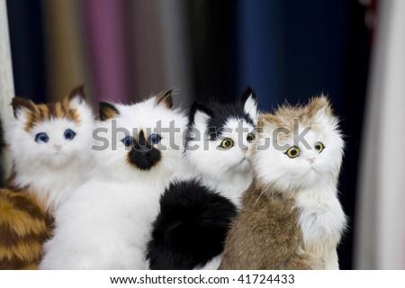 plush toy cats