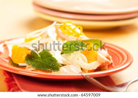 Poached salmon crunchy fennel and juicy orange combine for a delicious and healthy salad - stock photo