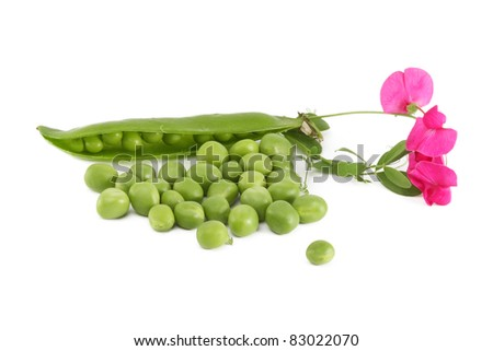 Pod peas and spilling with flowers, isolated