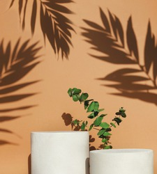 Podiums with green leaf and shadow on beige background. Empty background for cosmetic products.Beauty pedestal in sunlight