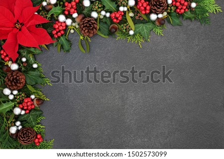 Poinsettia flower background border with silver ball baubles, holly, mistletoe and winter flora on grunge grey background with copy space. Traditional Thanksgiving or Christmas theme. #1502573099