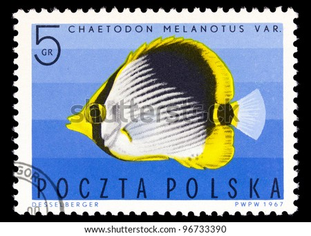 POLAND - CIRCA 1967: A stamp printed in Poland showing Black-blacked Butterflyfish, circa 1967