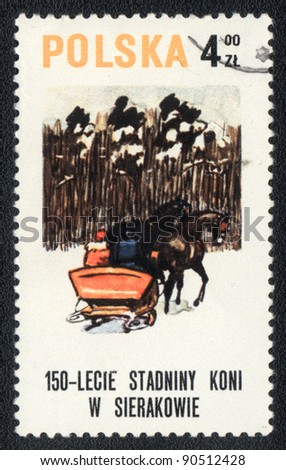 POLAND - CIRCA 1980: A stamp printed in POLAND shows a  Sledge, drawn by two horses, from series: 150-LECIE STADNINY KONI W SIERAKOWIE, circa 1980