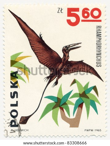 POLAND - CIRCA 1965: A stamp printed in Poland shows Rhamphorhynchus, series Dinosaurs, circa 1965