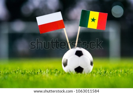 Poland - Senegal, Group H, Tuesday, 19. June, Football, World Cup, Russia 2018, National Flags on green grass, white football ball on ground. #1063011584