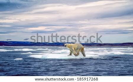 Polar bear on ice floe, Canadian Arctic