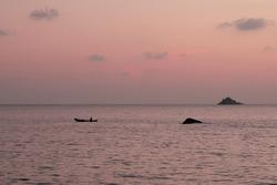 Polem beach during goldenhour sky at goa