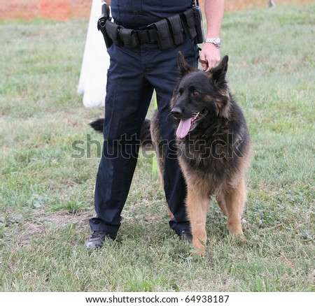 Police dog with human partner at demonstration.