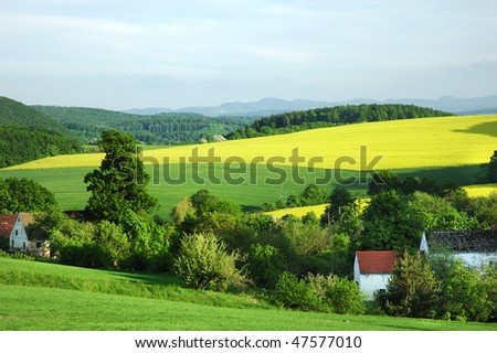 Polish countryside landscape in early summer