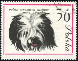 Polish lowland sheepdog (PON) on a vintage, canceled  post stamp from Poland
