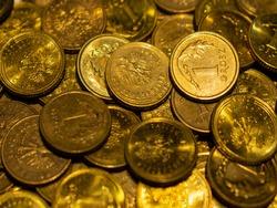 Polish money in denomination of 1 grosz.
