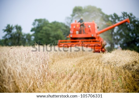 Polish red harvesting machine on wheat field