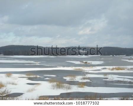 Polish river Narew #1018777102