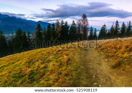 Polish Tatra mountains - Shutterstock ID 525908119