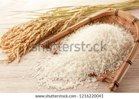 Polished rice in winnowing basket