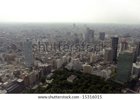 polluted modern megalopolis viewed from the air
