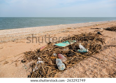 Pollution: garbages, plastic, and wastes on the beach after winter storms. Azov sea. Dolzhanskaya Spit