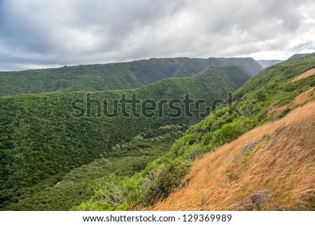 Pololu Valley in Big Island, Hawaii