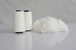 Polyester stable fiber & Raw White Polyester FDY Yarn spool with white background