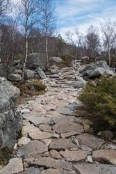 Polygon stone walkway in the Preikestolen ,Norway