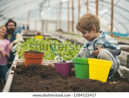 polytunnel farmer. polytunnel farmer small boy working on ground. little farmer work in polytunnel. polytunnel farmer with parents. kid with potted plant #1284522457