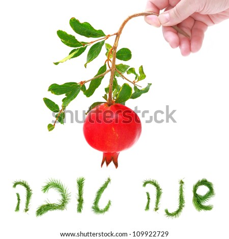 Pomegranate in human hand isolated on a white background and Hebrew words - Shana Tova - it's a new year greeting made of a pine branches (it's equivalent to an English phrase - Happy New Year) - stock photo