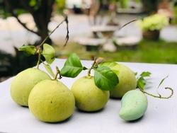 Pomelos (Citrus maxima or citrus grandis) with mango on white table