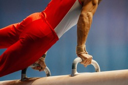pomme horse male gymnast to competition in artistic gymnastics