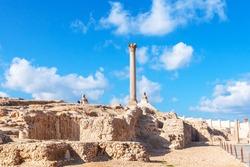 Pompey's pillar and ancient sphinx statue roman triumphal column in Alexandria, Egypt
