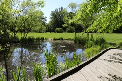 Pond and boardwalk photo taken at Inniswood Botanical Garden and Nature Reserve in Westerville Ohio. Background is vibrant trees, grass and bushes. Beautiful summer blue sky.