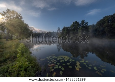 Pond at Dawn in the park #1455231899