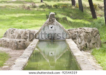 pond for watering livestock