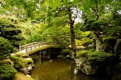 Pond in a Japanese garden