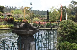 Pond in garden with fountain in background, Bali, Indonesia