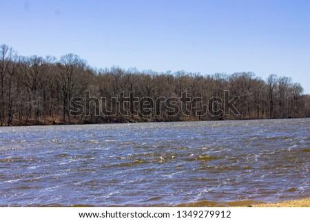 Pond on a Windy Day