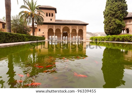 Pond with goldfish inside the Alhambra palace in Granada