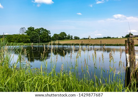 Pond with High Grass and an empty field. Empty field from a farm which was recently tilled. Sky is blue with some clouds in the sky