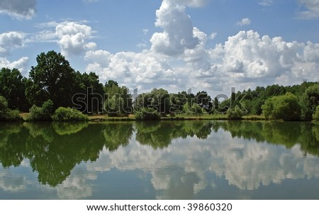 pond with trees