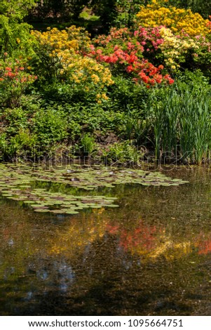 Ponds and ponds of a beautiful garden #1095664751