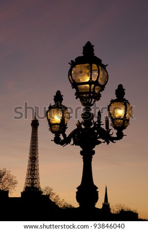 Pont Alexandre III Bridge illuminated at night and the Eiffel Tower in Paris, France