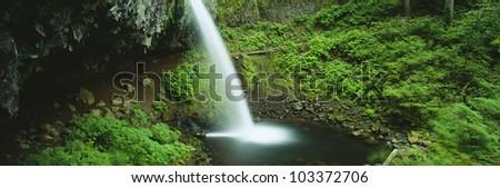Pony Tail Falls, Columbia River, Portland, Oregon