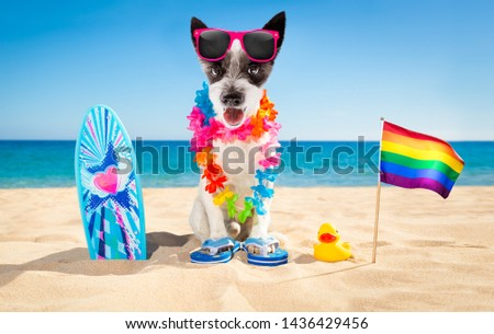 poodle dog at the beach with a surfboard wearing sunglasses and flower chain at the ocean shore on summer vacation holidays  waving rainbow lgbt gay flag #1436429456