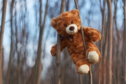 Pooh Bear sits on a tree branch. Winnie Pooh bear. Happy bear Winnie. Bear and sky.