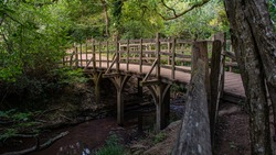 Pooh Sticks bridge were Pooh sticks originated located in the One Hundred Acre wood in Ashdown Forest near Hartfield.