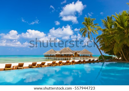 Pool and cafe on Maldives beach - nature vacation background #557944723