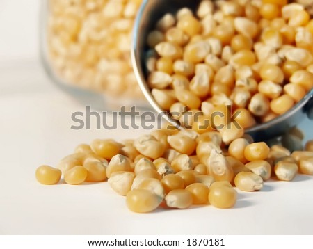 popcorn kernels spilling out of measuring cup - stock photo